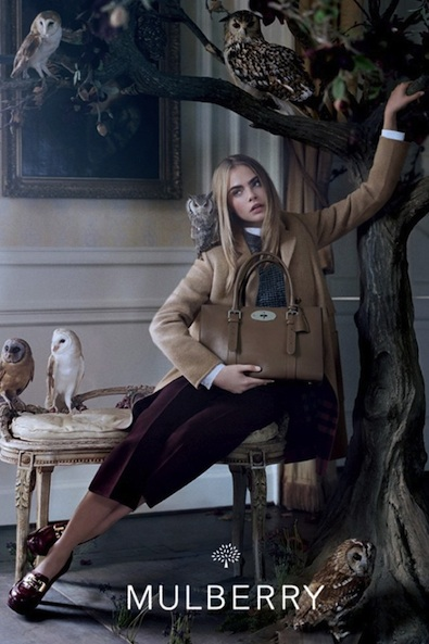 mulberry-fall-2013-2