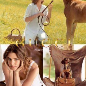 Η εγκυμονούσα Charlotte Casiraghi πρωταγωνιστεί στη νέα καμπάνια Gucci