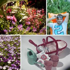 Ο Μάκης Τσόκας από τους «Κηπουρούς του Mega» μας δίνει tips για να φτιάξουμε μόνοι μας τον κήπο των ονείρων μας