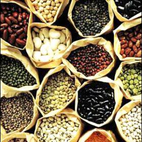 Όσπρια: Πείτε ναι στον διατροφικό πλούτο του χειμώνα