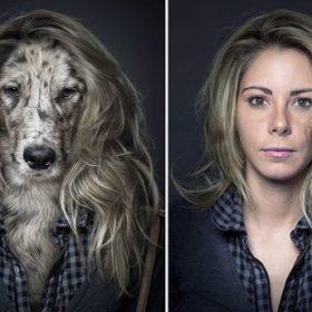 Dogville: Σκύλοι που μοιάζουν με τους ιδιοκτήτες τους