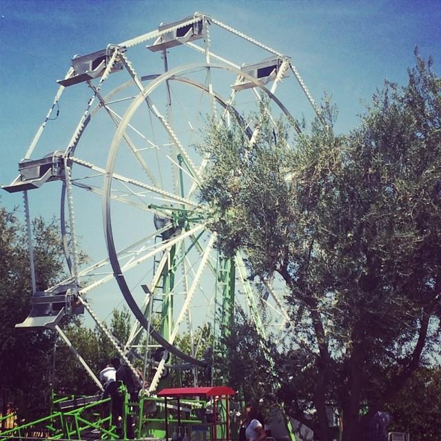 the-wheel