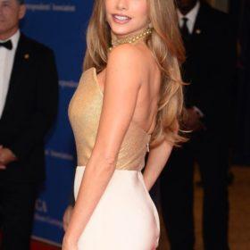Sofia Vergara: Ποιος είναι ο νέος της σύντροφος;