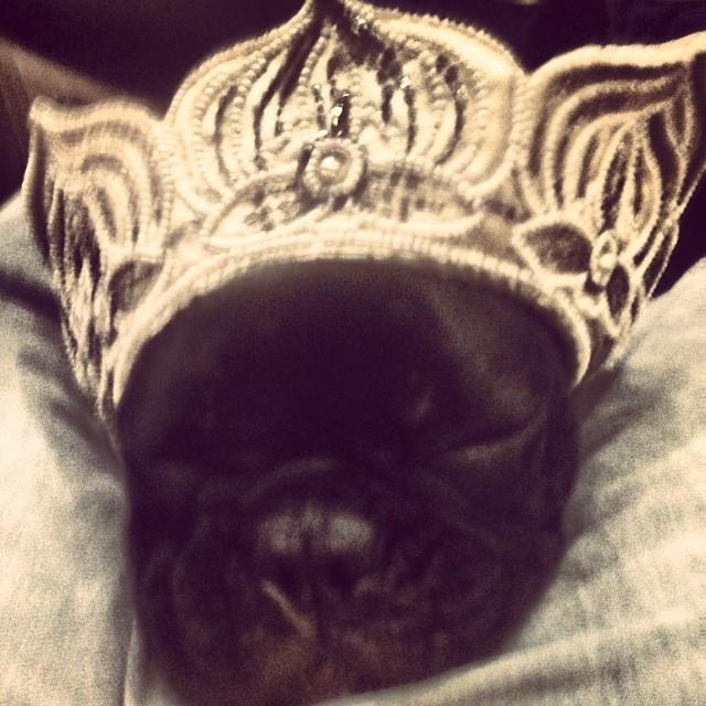 little-princess-2
