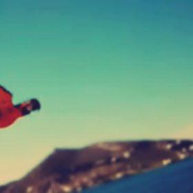 Απίστευτο βίντεο με παπαγάλο στην Πάρο κάνει το γύρο του κόσμου