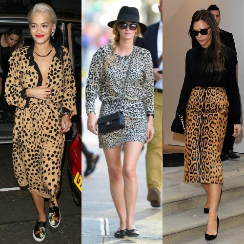 we-love-leopard