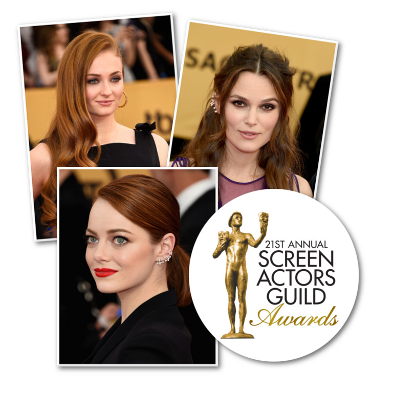 21st-annual-screen-actors-guild-awards
