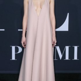H Dakota Johnson με Valentino