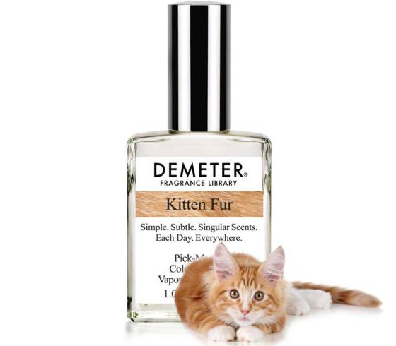 kitten-fur