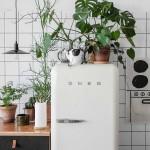 smeg, psugeio, fridge, fyta, koyzina, homepage image