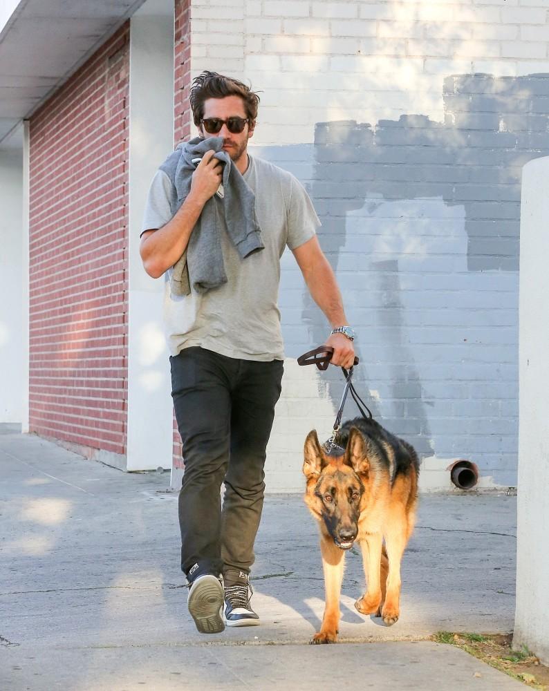 jake-gyllenhaal-%ce%ba%ce%b1%ce%b9-atticus