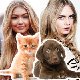 #AnimalLovers: Οι celebrities που κοιμούνται παρέα με τα κατοικίδιά τους κάθε βράδυ