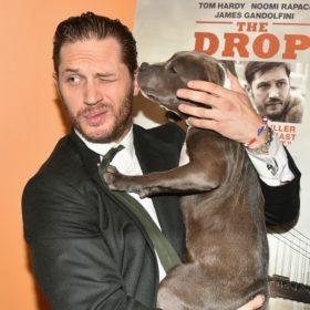 #hotdudeswithdogs: Οι πιο hot διάσημοι ποζάρουν με τα σκυλιά τους
