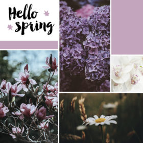 Πείτε μας το αγαπημένο σας λουλούδι και θα σας πούμε τι λέει για την προσωπικότητά σας