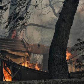Ηλίας Ψινάκης, Μελίνα Μακρή, Χριστίνα Λαμπίρη και Δημήτρης Αρβανίτης έχασαν τα σπίτια τους στις φωτιές