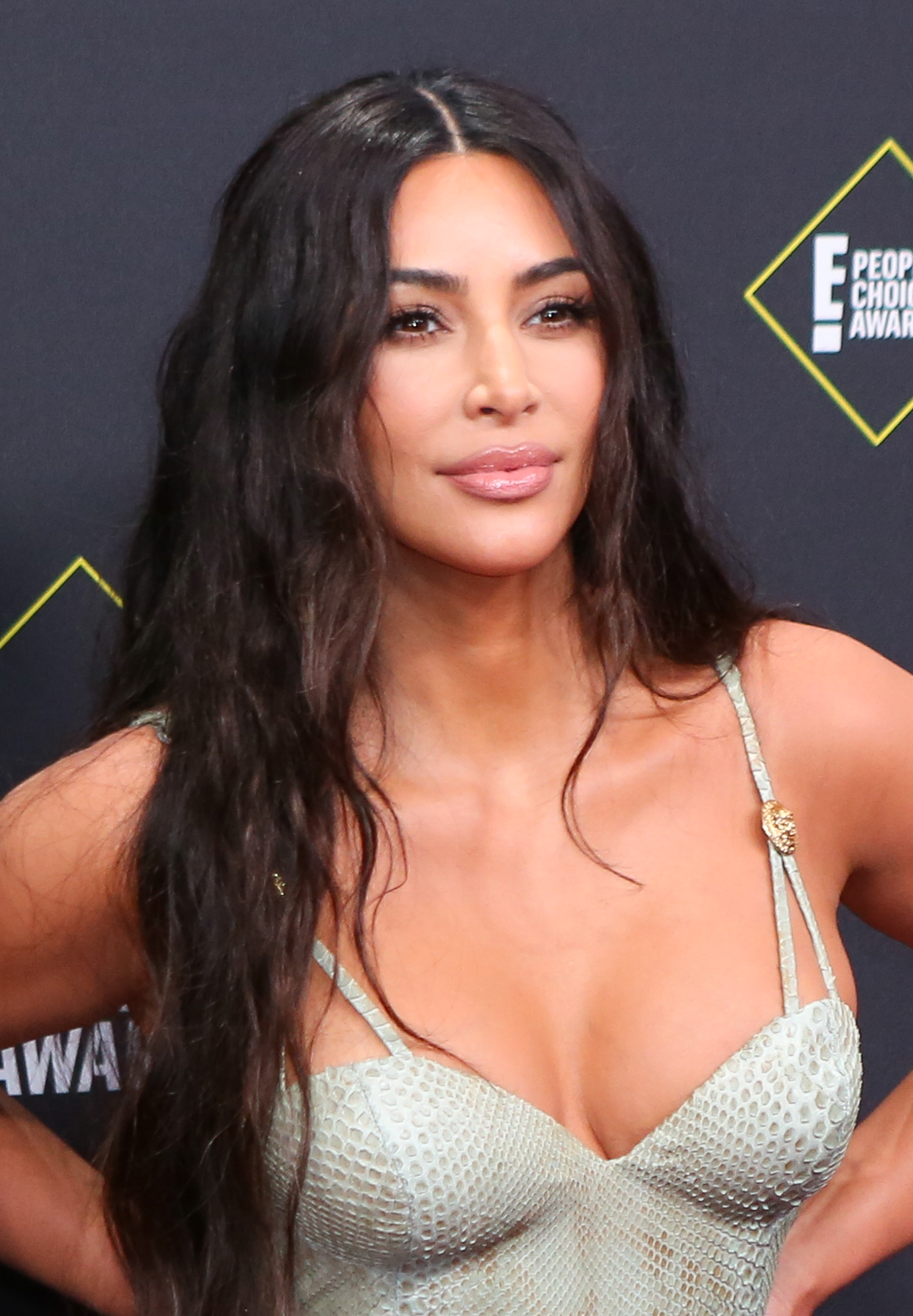 peoples-choice-awards-2019-red-carpet