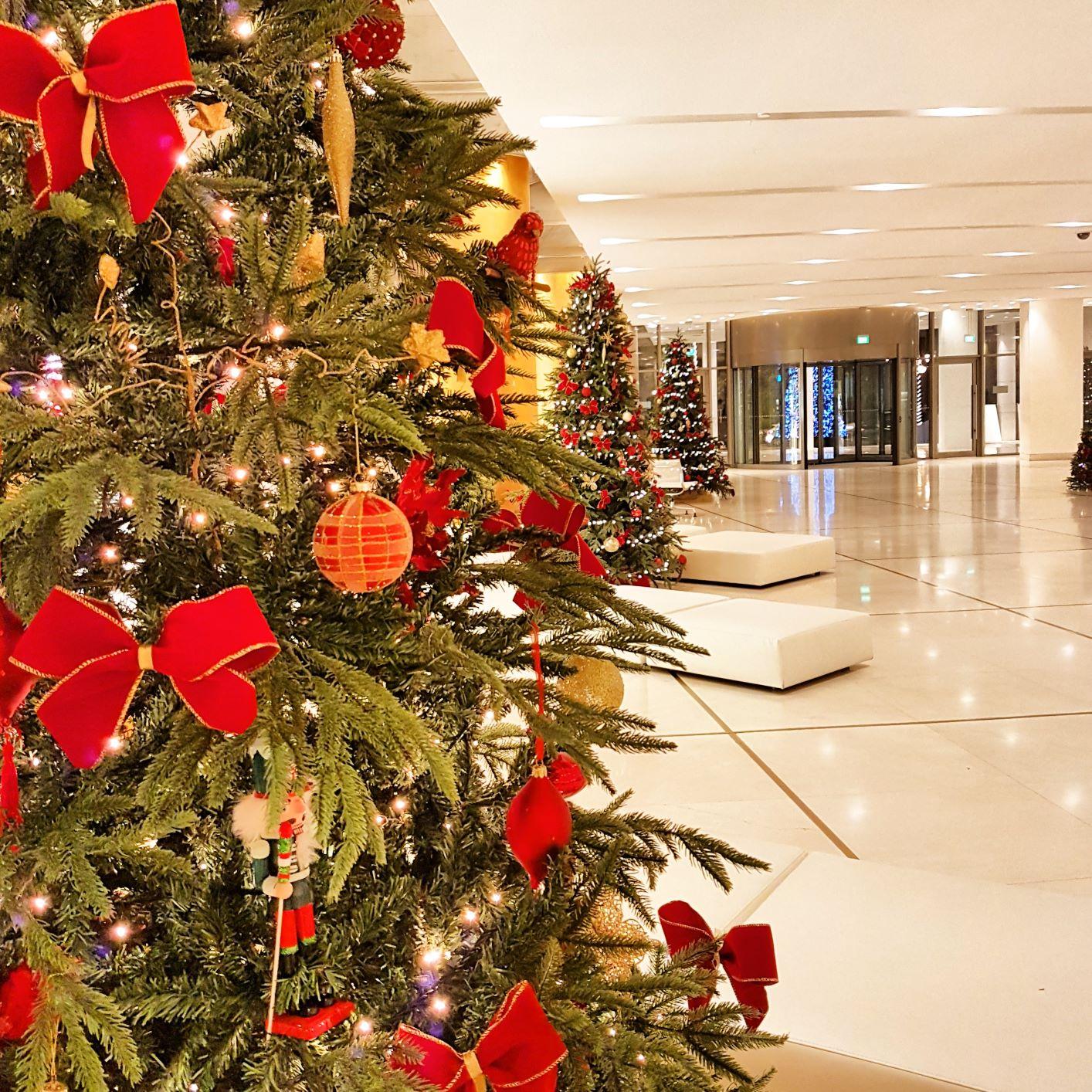 hiltonchristmas5